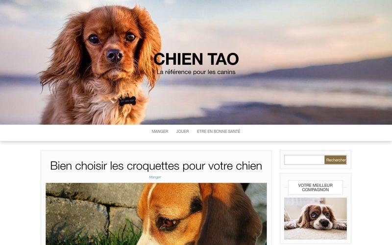 Chien Tao - La référence pour les canins